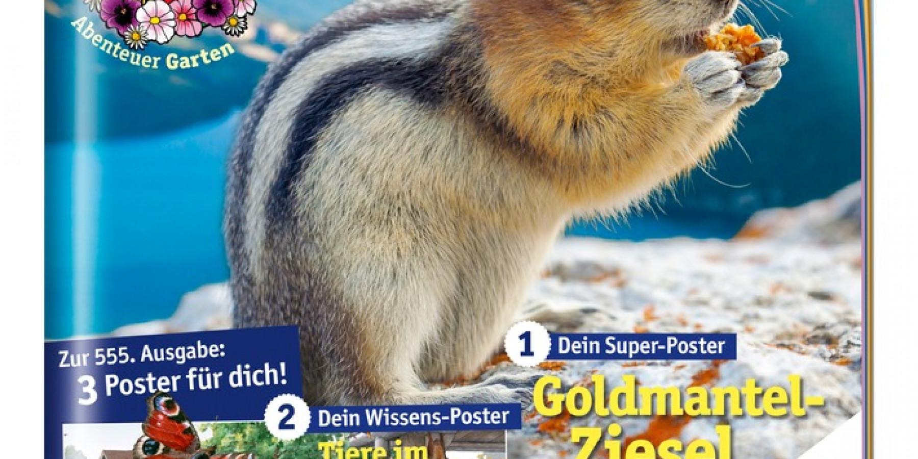 """Apotheken-Kindermagazin im Juli mit Wimmel-Poster """"Spaß im Freibad"""""""